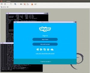edison_skype
